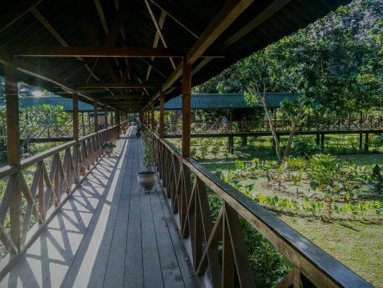 Ecoamazonia Lodge: hallway