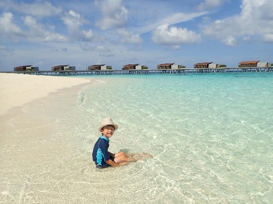 Picture Of Park Hyatt Maldives Hadahaa