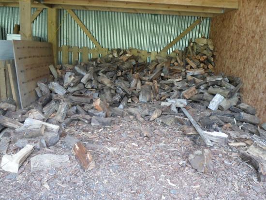 Trellyn Woodland Camping: Chopping Wood Area