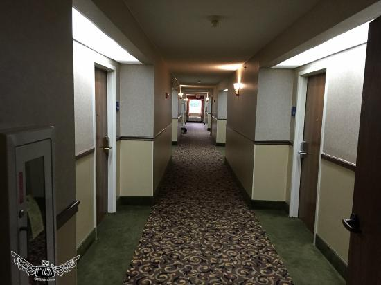 Holiday Inn Express Prince Frederick: smelly hall
