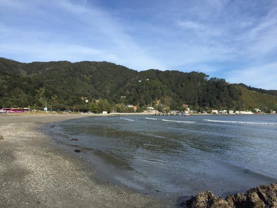 Days Bay : photo0.jpg