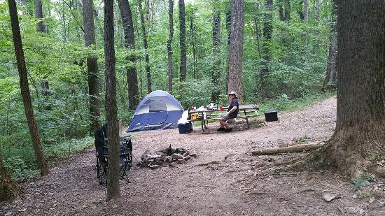 "Gapland, MD: ""Bear"" tent site in August"