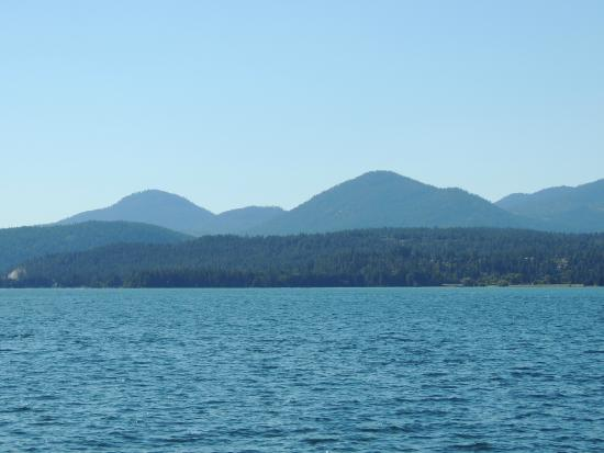 Lake Pend Oreille Cruises: View from the boat