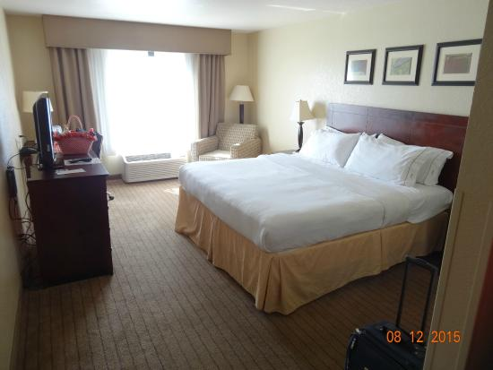 Holiday Inn Express Hotel & Suites Exmore: King Bed Room at the HIE, Exmore, VA