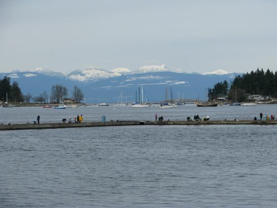 Nanaimo, Canadá: Fishing pier for crabs, overlooking Newcastle and Protection Islands