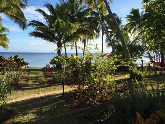 Papageno Resort: Ocean bure view