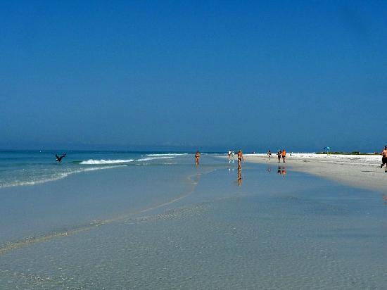 Siesta Beach La Bianca Spiaggia Di Key Sarasota Fl