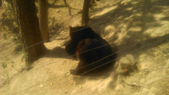 Tabor Zoological Garden