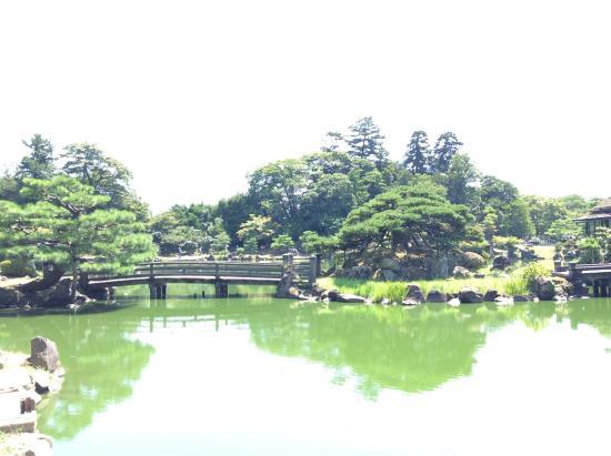 Koki Park