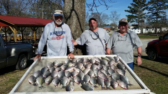 Bay Springs Country Inn & Campground: Fishing Guides available