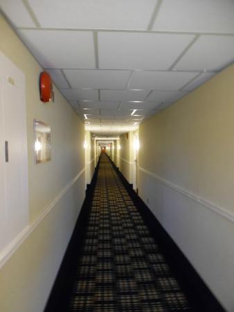 Comfort Inn Corner Brook : Ground Floor Hallway from End Opposite Lobby