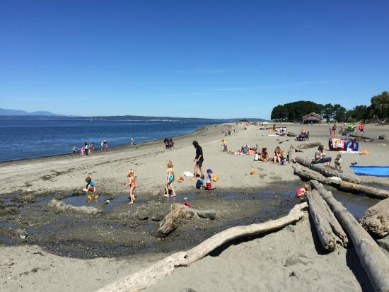 View Of Golden Gardens Beach From The South Picture Of Golden Gardens Park Seattle Tripadvisor
