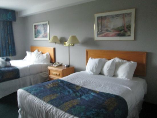 St. Jude Hotel: Modern room