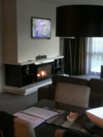 Village Lake Apartments: T.V and fireplace area.
