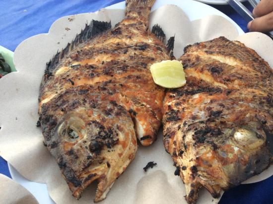 Roman Cafe: Grilled fish