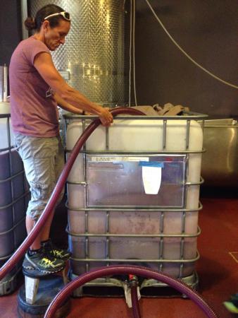 Cream Ridge Winery