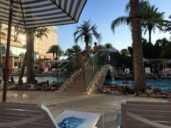 I Love Moddy Gardens Hotel Picture Of Moody Gardens Hotel Spa Convention Center Galveston