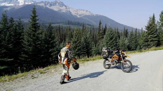 Lillooet Lake Lodge: Easy to Make new Friends on the Road Here