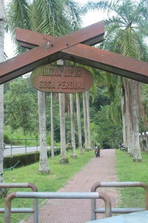 Soga Perdana Amenity Forest: Entrance