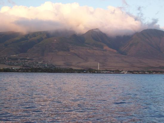 Lahaina Cruise Company - Maui Princess Sunset Dinner Cruise