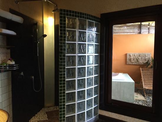 Mangosteen Ayurveda & Wellness Resort: photo3.jpg
