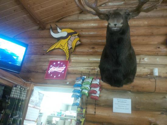 Bigfork, MN: Moosehead