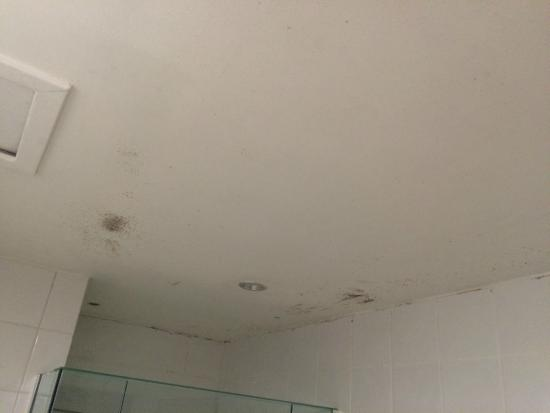 Tanoa Waterfront Hotel: mould_1