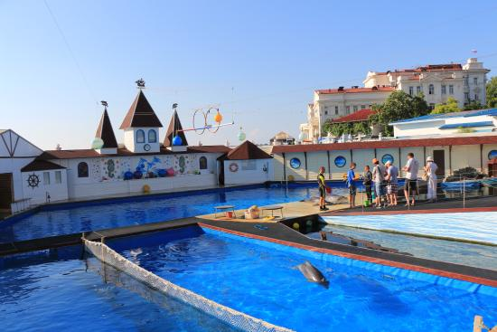 Sevastopol Dolphinarium in Artillery Bay
