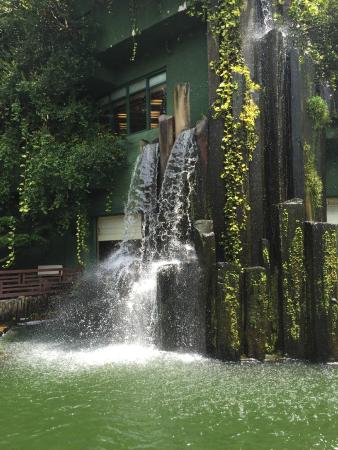 wasserfall im garten bild von nan lian garten hongkong tripadvisor. Black Bedroom Furniture Sets. Home Design Ideas