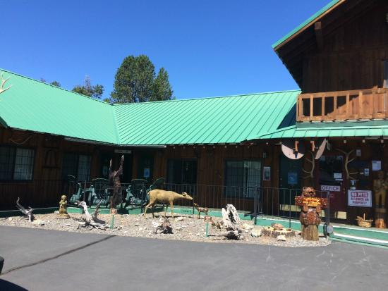 Woodsman Country Lodge: Hotel Exterior 2