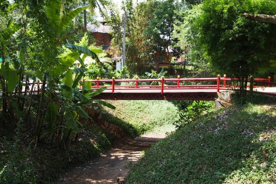 Gardens - Picture of Tao Garden Health Spa & Resort, Doi Saket ...