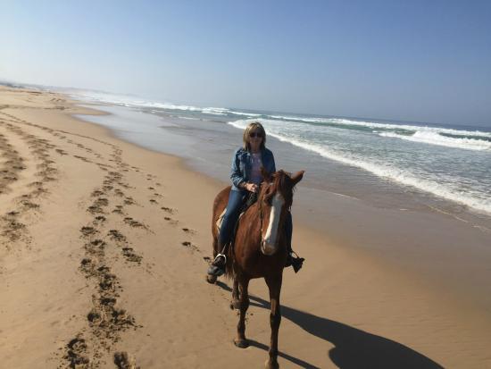 Papiesfontein Beach Horse Rides : Peace.