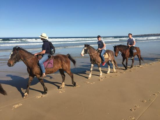 Papiesfontein Beach Horse Rides: New friends!