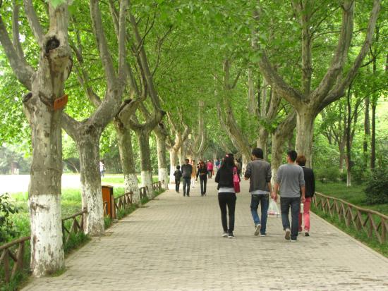 Ma'anshan, China: В парке