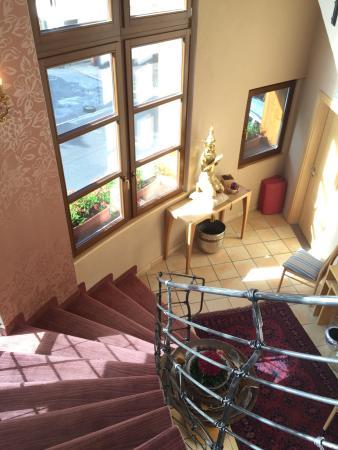 Hotel Rosa Canina: photo6.jpg