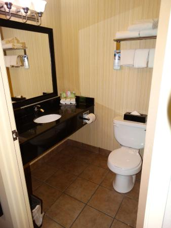 Holiday Inn Express Hotel & Suites Prince Albert: Standard double room