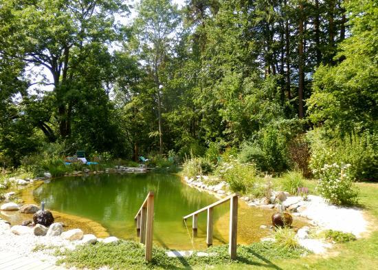 Der Knappenhof: Schwimmteich
