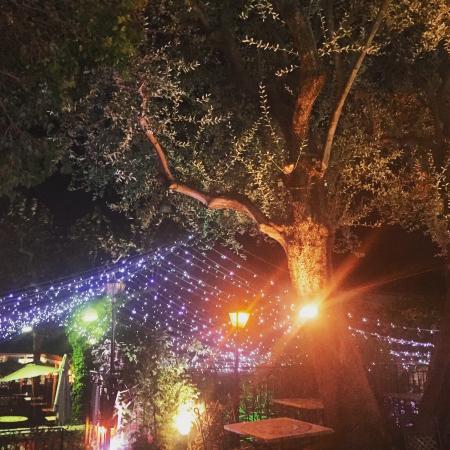 Restaurant Le Jardin: photo0.jpg