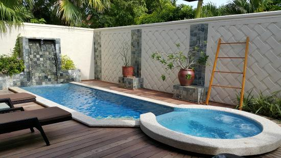 Vihamanafushi: Private pool and jacuzzi
