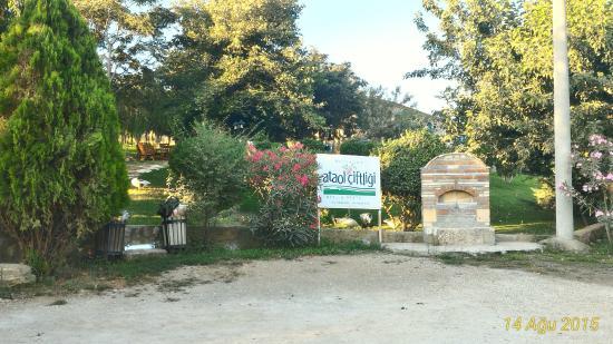 Ataol Tatil Ciftligi: garden