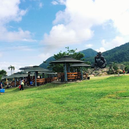 photo2 jpg picture of campuestohan highland resort bacolod