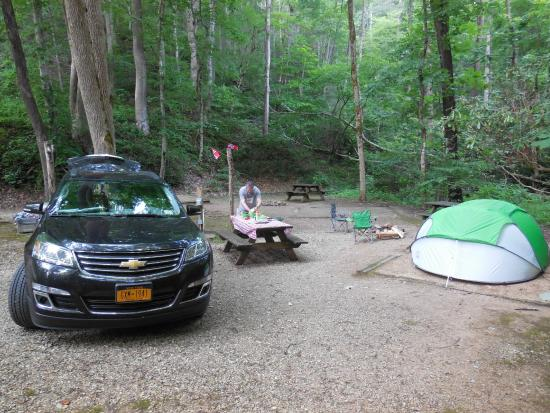 Turkey Creek Campground: we were the only critters in the woods