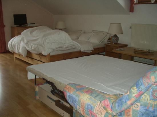 schlaf und wohnzimmer der wohnung vogelsang bild von haus j gerfleck spiegelau tripadvisor. Black Bedroom Furniture Sets. Home Design Ideas