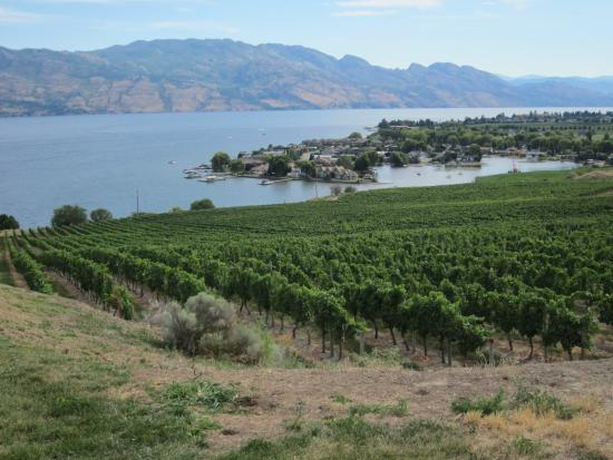 West Kelowna, Canadá: Winery with a view