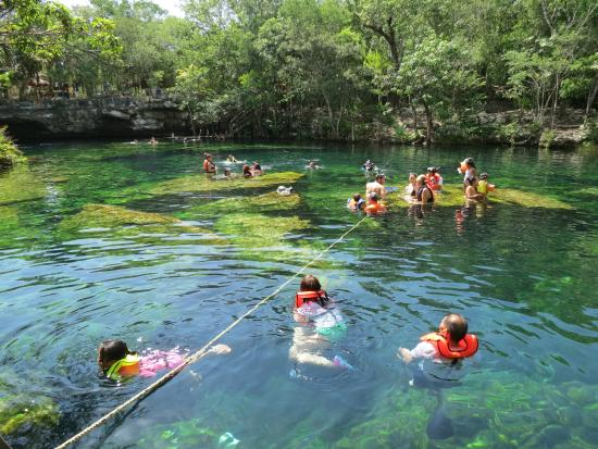 Cenote picture of cenote jardin del eden yucatan for Cancion en el jardin del eden