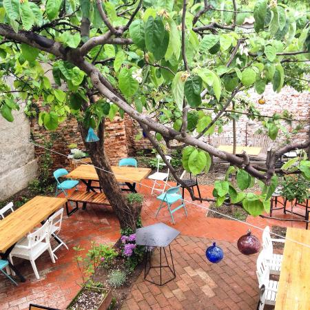 Simbio: A lovely garden with great food. The staff is very friendly and the atmosphere is cozy.