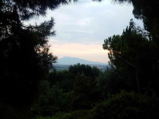 Scuderie della Civita: The view from the balcony outside the Kelly apartment