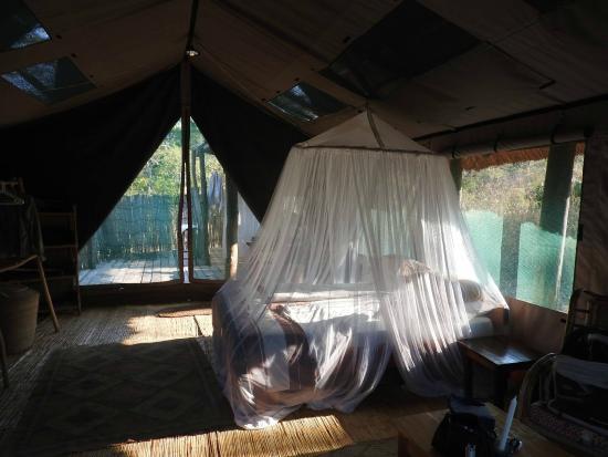 Bua River Lodge: tenda island