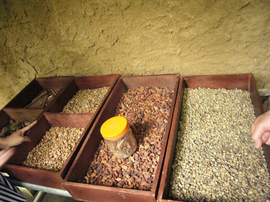 Civet coffee process - photo#4