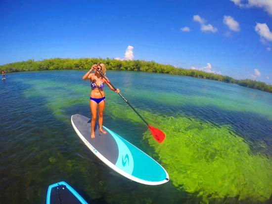 360 Surf School: See the Marine Life of the Nichupte Lagoon